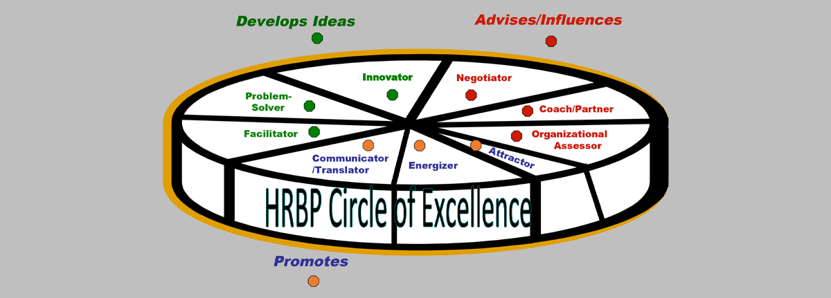 A pie chart of nine roles for the HR business partner.